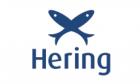 Promoções Hering