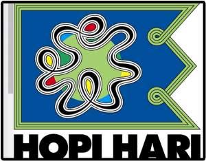 [Peixe Urbano] Ingresso para Hopi Hari Individual por R$  30