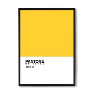 [PRIVALIA OUTLET] Quadro Pantone Amarelo & Branco 33x23x1cm