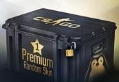 Comprar CS:GO 1 Premium Skin Por R$6