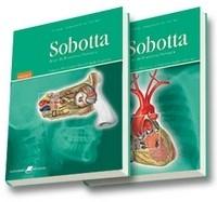 Sobotta - Atlas de Anatomia Humana - 2 Vols. - 22ª Ed. 2006 por R$ 219