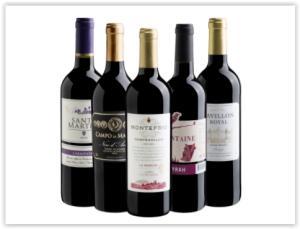 Kit com 5 vinhos(Espanha, Chile, Itália e França) - R$ 133