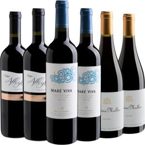 Kit de Vinhos Adega Cheia - Por Jô Barros - R$149