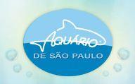 Ingresso Aquário de São Paulo por R$ 50 de 15h até 0h