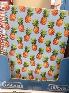 [Loja Física BH] Caderno capa dura 200 folhas - R$9,99