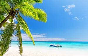 Pacote Punta Cana Aéreo + All Inclusive + Traslado grátis (5 ou 7 diárias) | a partir de R$4.219