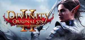 Divinity: Original Sin 2 - Definitive Edition (PC)