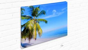 Vale Foto Tela Canvas 20 x 30 cm | R$20