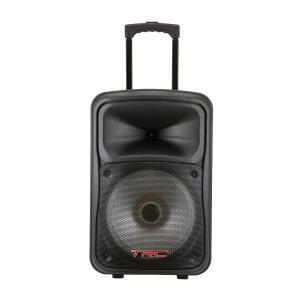 Caixa Amplificada TRC 536 480W com USB, Bluetooth e Rádio FM | R$499