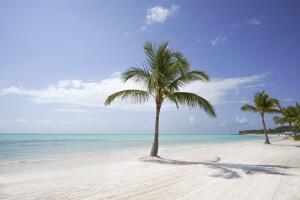 Voos para Punta Cana, saindo do RS, a partir de R$1.522