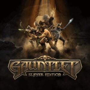 Gauntlet: Slayer Edition - PS4