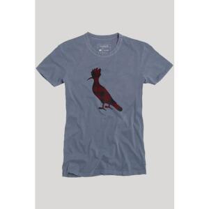 Camiseta Pica-Pau Xadrez Junino Reserva - R$ 70 c/ Ame