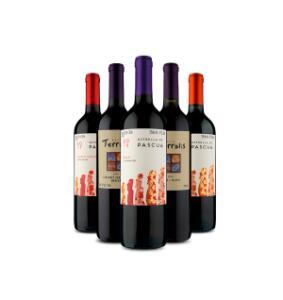 Seleção de kits de vinhos com 5 garrafas a partir R$ 88