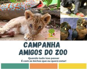 Ingresso Antecipado no Zoológico de São Paulo | R$25