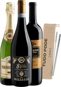 Trio bestsellers de vinhos + canudo sustentável | R$115