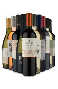 Kit 10 vinhos da América do Sul (10 Vinhos) | R$299