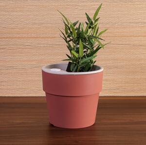 Vaso Autoirrigável Terracota de Polipropileno Rosa 16,5x15cm