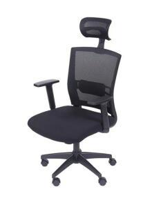 Cadeira Ergonômica New Ergon Presidente | R$456