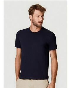 5 Camisetas masculinas básicas slim Hering | R$85