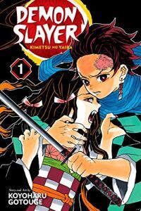 eBook Demon Slayer: Kimetsu no Yaiba, Vol. 1: Cruelty (English Edition)