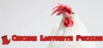 Chicken Labyrinth Puzzles - Steam Key